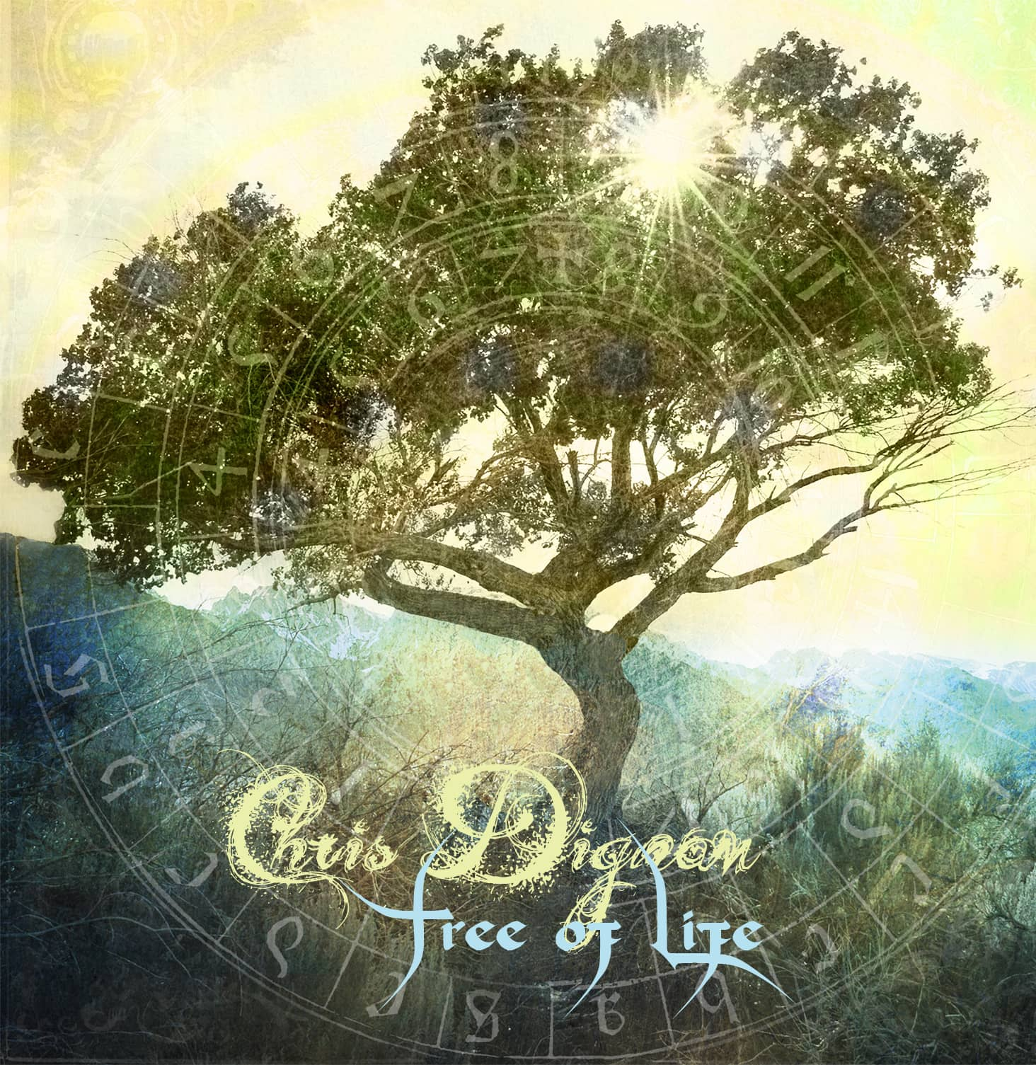 Tree of Life Cover - Chris Dignam